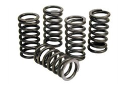 Dp reinforced clutch springs kit